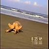 Sexando en la playa. 43-4: Calientes y exhibicioni…